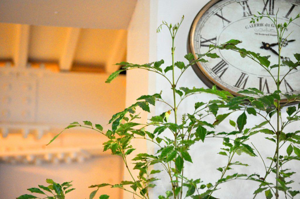 飲食店の労働時間削減イメージ
